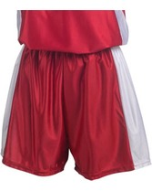 Womens Dazzle Short with Side Insert Panel Teamwork 4249