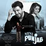 Mini Punjab - Cd