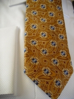 Gold Paisley & Blue Flower Woven