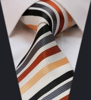 Backordered---Power Stripe Silk Woven Necktie