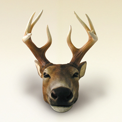 White Tail Deer Money Bank