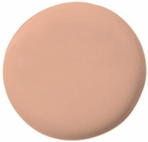 TEMPTU PRO HYDRA LOCK FOUNDATION 5.5 ROSE BEIGE .25OZ