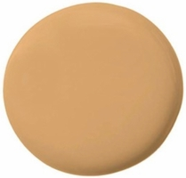 TEMPTU PRO HYDRA LOCK FOUNDATION 6 WARM BEIGE .25OZ