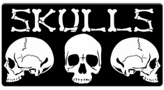 "AEROSPACE Airbrush Stencils - <BR><font color=""999999""> Skull Series</font>"