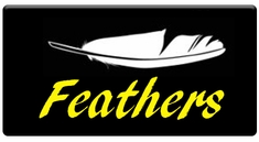 AEROSPACE Airbrush Stencils - Feather Series