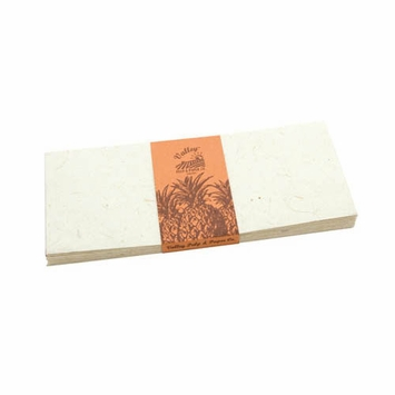 Valley Eco Pulp Envelopes (no. 10) in Pineapple