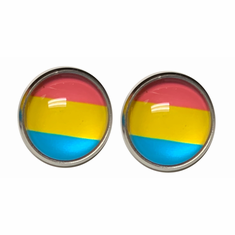 Earrings - Pansexual Pride