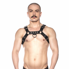 Prowler Red Bull Harness - Black XL
