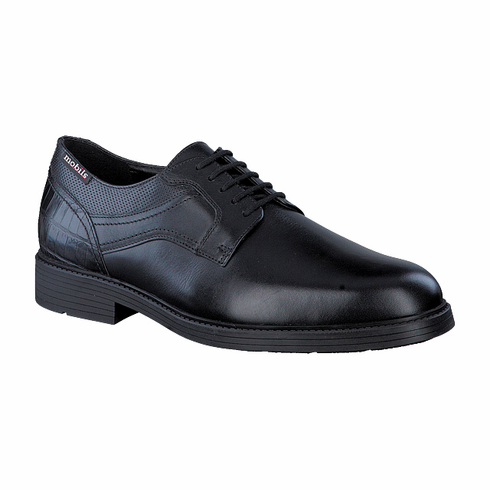 FLAVIEN BLACK RANDY / FOG