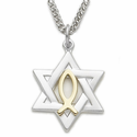 "Sterling Silver 2-Tone Star of David with Centered Fish Necklace on 24"" chain"