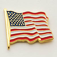 """The """"Wavey American Flag"""" Pin"""