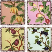 Nature's Fruit - Square Dinner Plate Set of 4