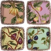 Nature's Fruit - Small Square Bowl Set of 4