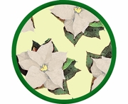 Poinsettia/Yellow - Unrimmed Salad Plate