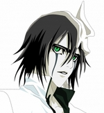 Bleach Ulquiorra Schiffer Commission Cosplay Wig
