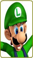 Nintendo Luigi Green Cosplay Hat