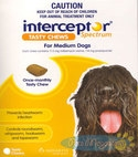 Interceptor (Yellow) for Dogs (25 - 50lbs)   11- 22kg - (6 Month Pack)