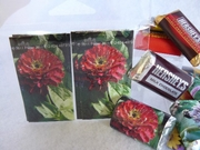 Candy Wrappers :: Beauty In Flowers :: HCW07
