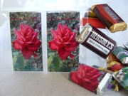 Candy Wrappers :: Beauty In Flowers :: HCW23