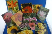 Postcards :: Beauty In Flowers :: PCAB