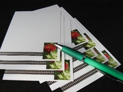 Flat Notesheets :: Beauty In Flowers :: FN07