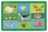 Crocodile Creek <br>Placemat <br>Barnyard