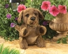 Folkmanis Puppet <br>Brown Puppy Dog