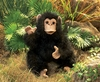 Folkmanis Puppet <br>Baby Chimpanzee