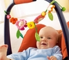 Haba Pram Decor<br>Blossoms Pram