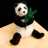 Woolpets <br>Panda Bear <br>Intermediate