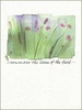 Consider the Lilies Encouragement Greeting Card