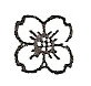 Composite dogwood engraving design option