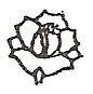 Cultivated rose engraving design option