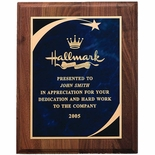 8 X 10 INCH PLAQUE WITH BLUE SCREENED PLATE