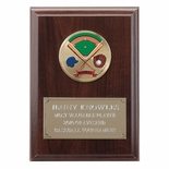 4-1/4  X  6 INCH PLAQUE WITH GOLD EMBOSSED PLATE TAKES INSERT