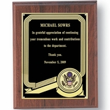 8 X 10 INCH MILITARY PLAQUE, TAKES 2 INCH INSERT - MULTIPLE FINISHES