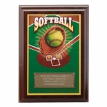 5 X 7 INCH SOFTBALL DIGITAL PHOTO PLAQUE WITH GOLD ALUMINUM ENGRAVING PLATE