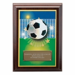 5 X 7 INCH SOCCER DIGITAL PHOTO PLAQUE WITH GOLD ALUMINUM ENGRAVING PLATE