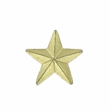 STAR PIN GOLD 3/8 INCH