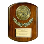 9 X 12 INCH GENUINE WALNUT DEPARTMENT OF JUSTICE PLAQUE WITH 4 INCH MEDALLION
