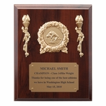 8 X 10 INCH PLAQUE WITH GOLD PLATE TAKES INSERT