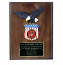 American Eagle Patriot Plaques
