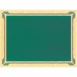 6 X 8  GREEN SCREENED PLATE