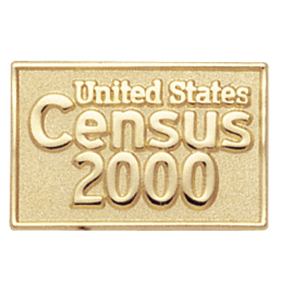 Image result for census pin