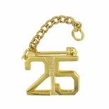 25 YEAR GUARD PIN WITH CHAIN