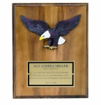 Military Award Plaques with Full Plates and Eagles