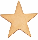 Star Recognition Lapel Pins
