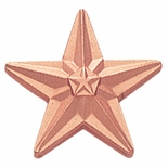 BRONZE STAR PIN 3/4 INCH