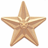 GOLD STAR PIN 3/4 INCH