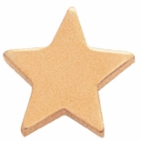 STAR GOLD PIN FLAT 1/2 INCH